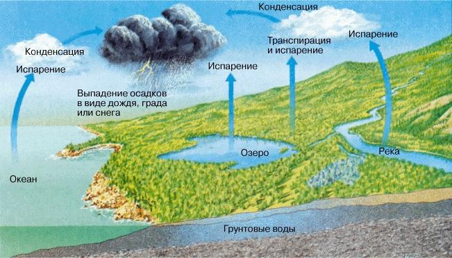 2015 вода циркулирует в земной