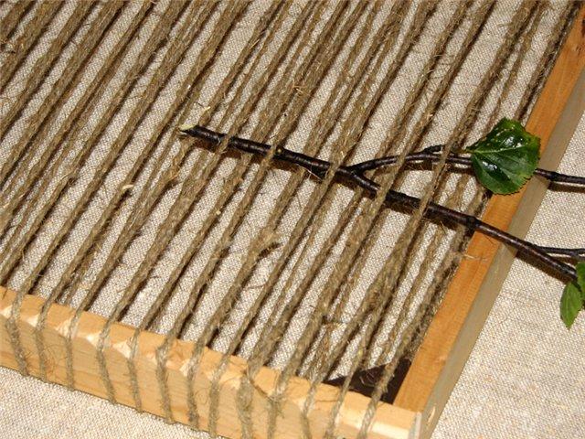 Ведьмины волшебные травяные коврики - Тридевятое Царство