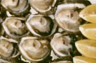аллергия на устриц симптомы